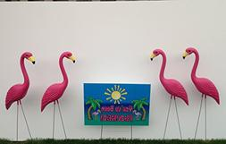"""24 Pink Flamingos and a """"You've Been Flocked"""" Flamingo Yard"""