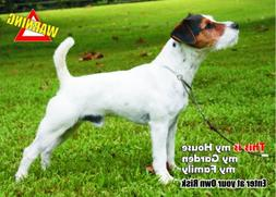 Attention - Beware / Fun Sign Dog Jack Russell Terrier Dog f