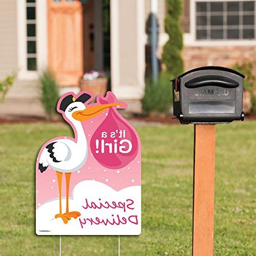 Big Dot Girl Special Pink A Stork Baby Welcome Yard
